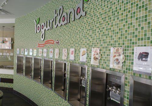 Yogurtland Awarded Franchise Business Review's Franchisee Satisfaction Award
