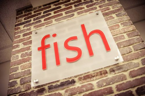 Fish Consulting Announces Strong First Quarter with Several New Clients