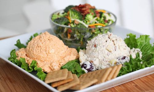 Chicken Salad Chick Opens First Palm Harbor Location