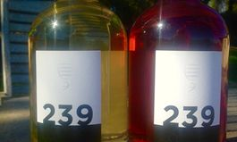 """Australian Winemaker Mike Brown of Kalyra Winery Announces the Launch of """"239"""""""
