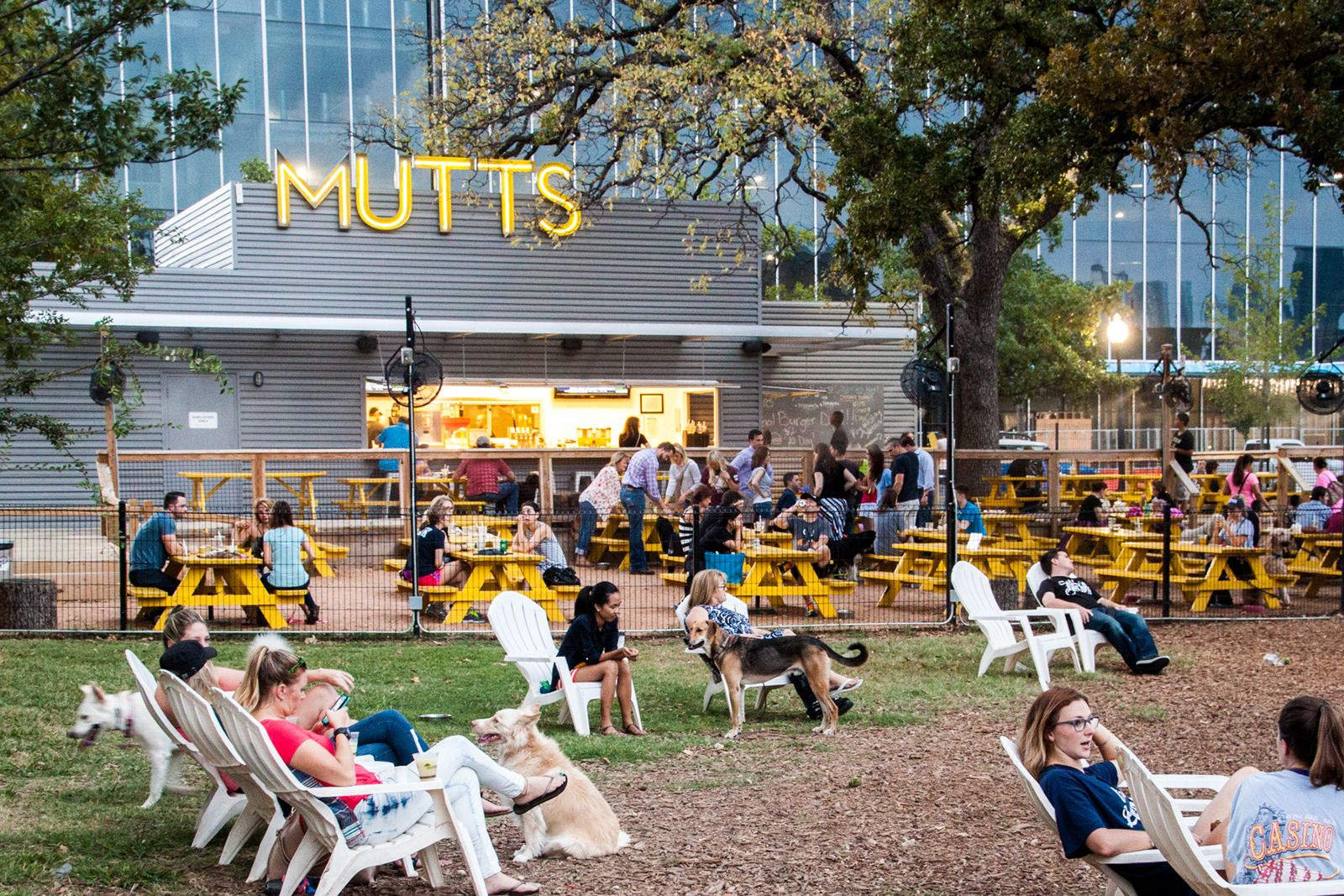 MUTTS Canine Cantina, a new innovative franchise concept that provides a unique urban oasis for dogs and their owners, is expanding across major markets in the U.S. Franchising opportunities available.