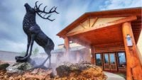 Twin Peaks Starts Off 2019 with Impressive Momentum