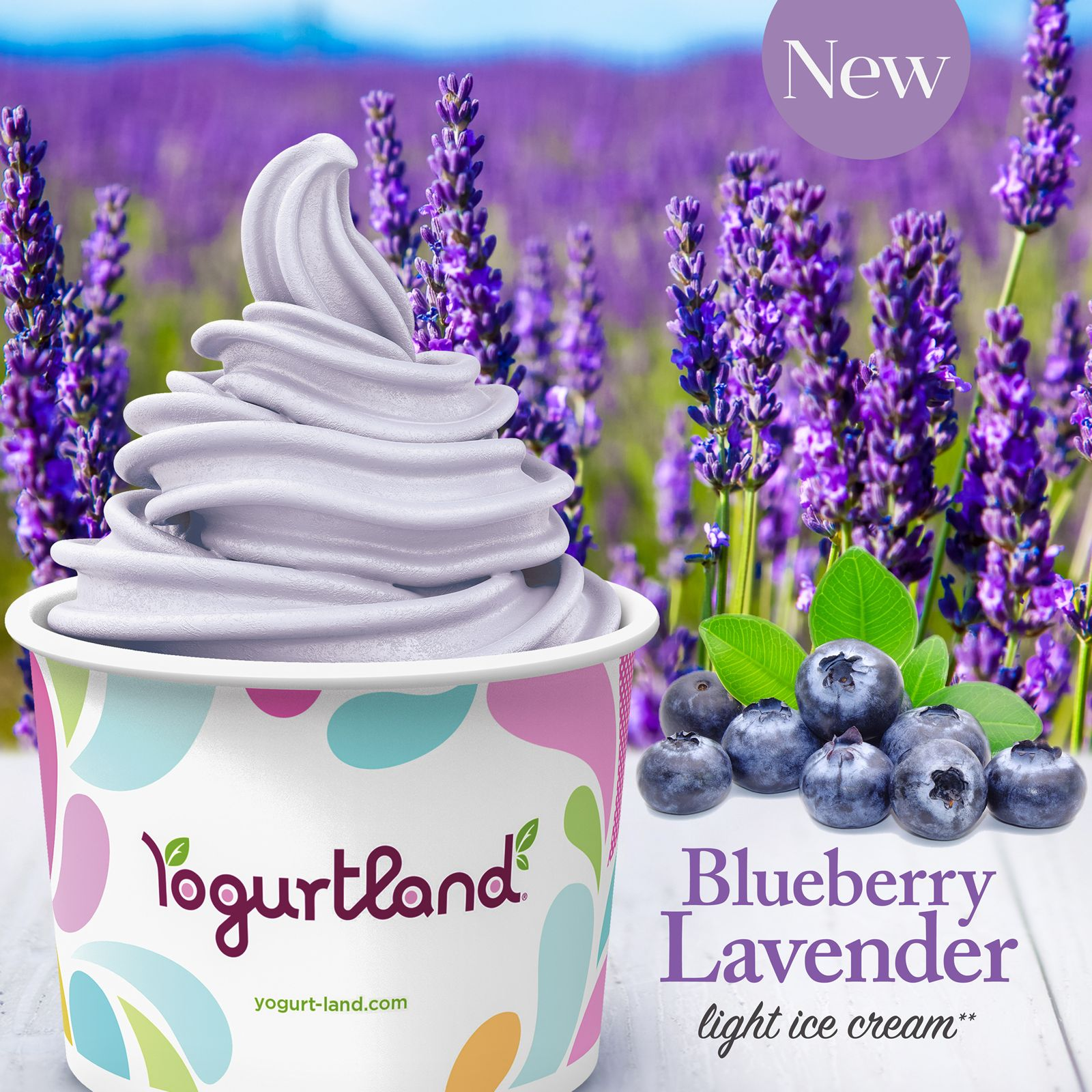 Sit Back, Relax and Enjoy Yogurtland's New Blueberry Lavender Light Ice Cream