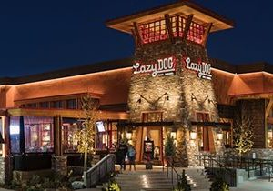 Lazy Dog Restaurant & Bar Opens in Naperville