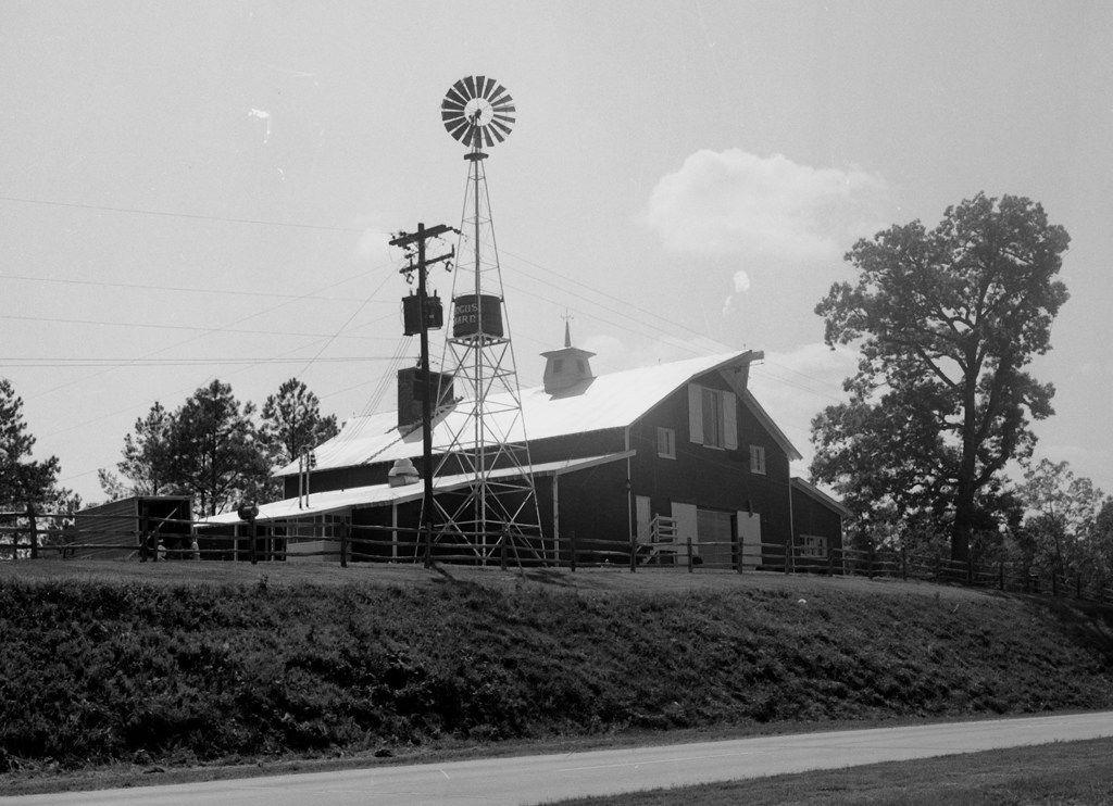Angus Barn 1960