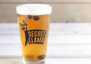 """World of Beer Bar & Kitchen Hosts """"Bring Your Llama to Wob Day"""" in Honor of National Llama Day"""