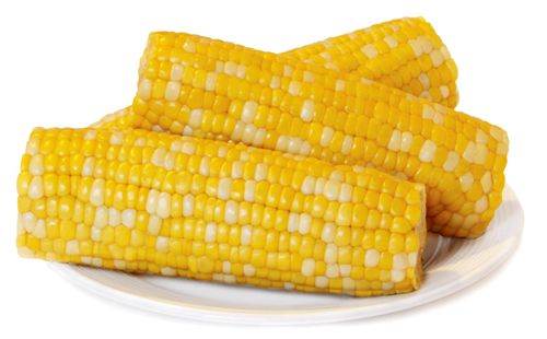 New Sweet Corn for Foodservice & Retail Sales