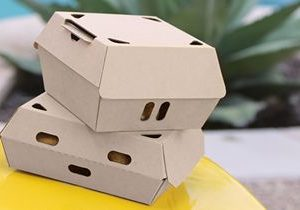 Novolex Introduces EcoCraft Fresh & Crispy Containers to Keep Fried Foods Warm and Crunchy
